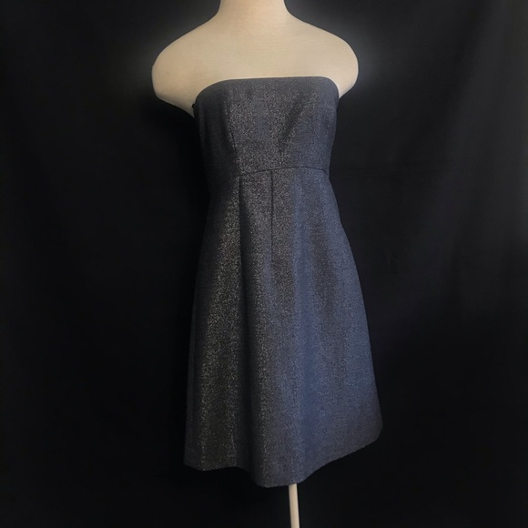 Theory strapless cocktail shimmer dress size